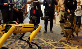 Maschine trifft Tier: Hunderoboter spielt mit Polizeihund
