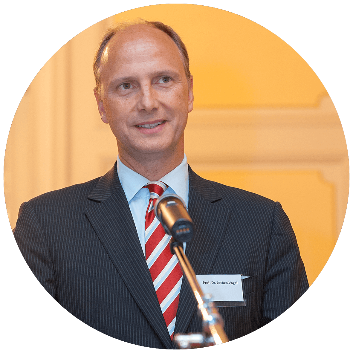 Prof. Dr. Jochen Vogel <div>VM Value Management GmbH</div>